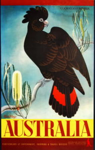 Eileen Mayo Cockatoo And Banksia. Australia, c1956. colour process lithograph, 99.7 x 63.8cm. Image courtesy Josef Lebovic Gallery