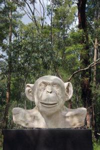 Lisa Roet White Ape (John Gollings 1)