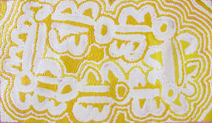 Mona Napaljarri Rockman Budgerigar Dreaming 2009 85x50cm. Image courtesy the artist and Cooee Art